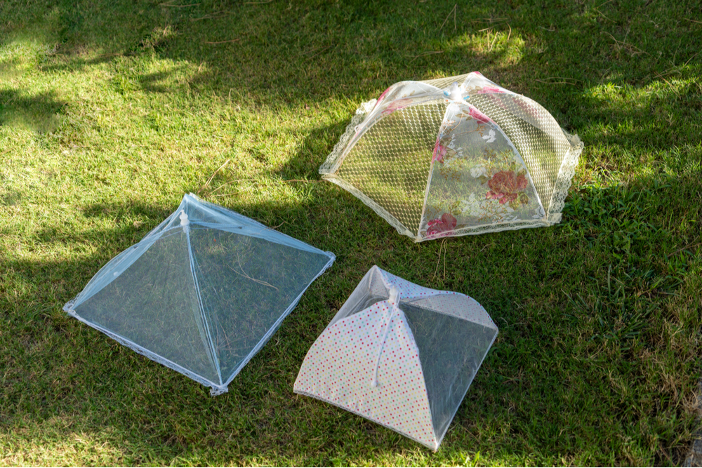 cover-food-with-net-protection-from-flies-insects-outdoors