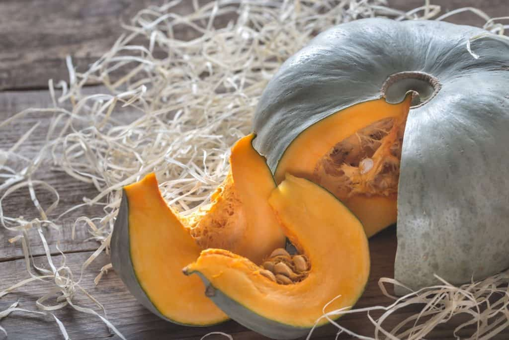 pumpkin-survival-garden
