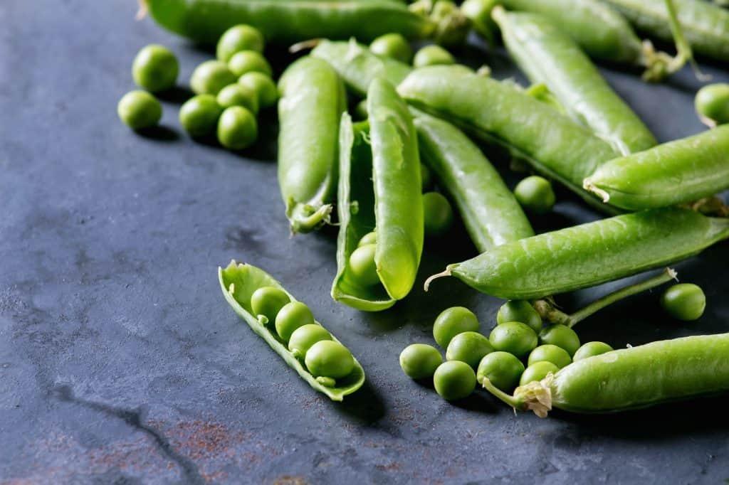 peas-survival-gardens