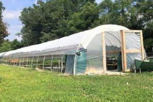 Bootstrap Farmer's New DIY Pre-Bent Steel Hoop House Kit (All Metal Greenhouse)