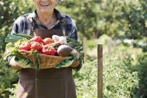 Vegetable Gardening for Beginners - Best Free Resources for Starting a Garden