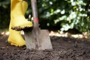 16 Vital Things You Must Know Before Starting a Garden
