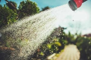 Using Well Water in the Garden - a Good Idea?