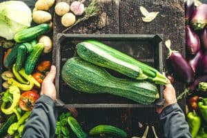 How to Eat Zucchini in 87 Different Ways - Use Your Bountiful Zucchini Harvest