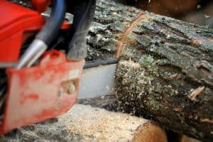 10 Best Electric Chainsaws of 2020 Review (Battery Models)