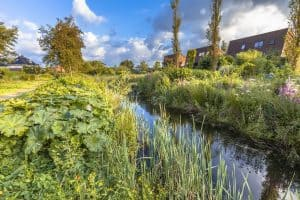 2 Cool Things You Can Do With the Permaculture Swale