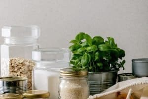 30+ Hurricane Food Ideas to Stockpile for Emergencies
