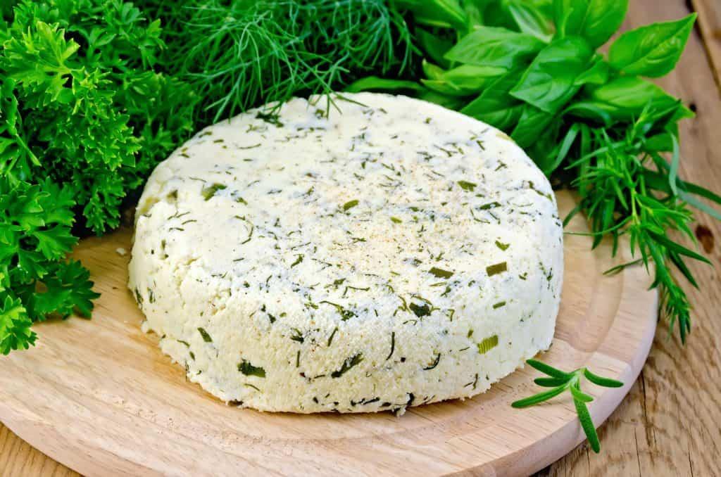 homemade-cheese-homestead-skills