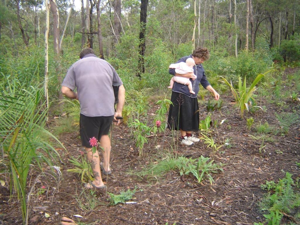 benefits-of-gardening-for-environment