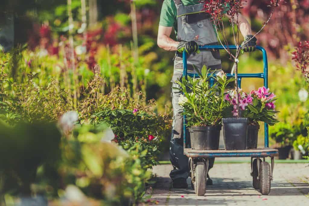 best-garden-cart-types