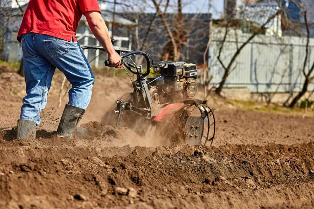 cultivator-vs-tiller