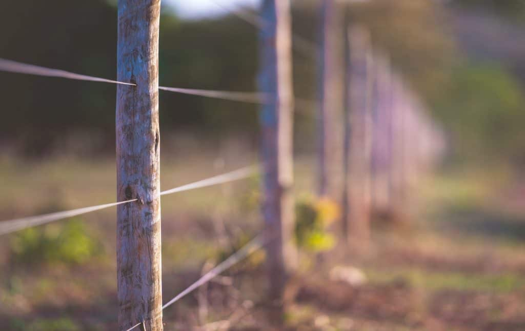 fencing-homesteading