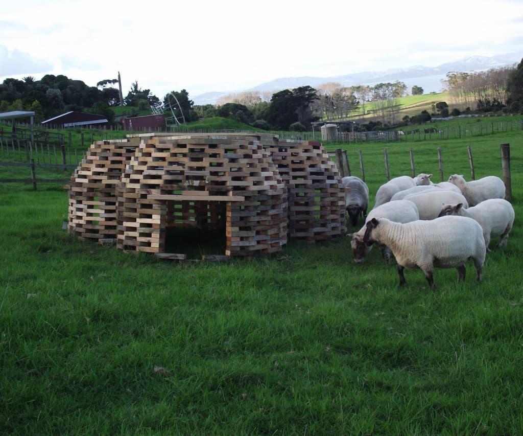 goat-hive-shelter