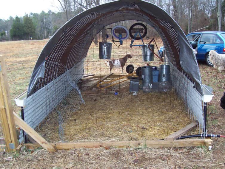 movable-goat-shed-with-water-catchment