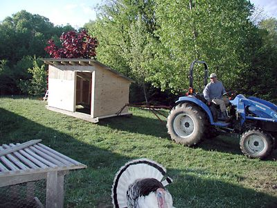rooster-hill-farm-shelter