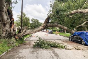 Where to Park My Car During a Hurricane [5 Options]