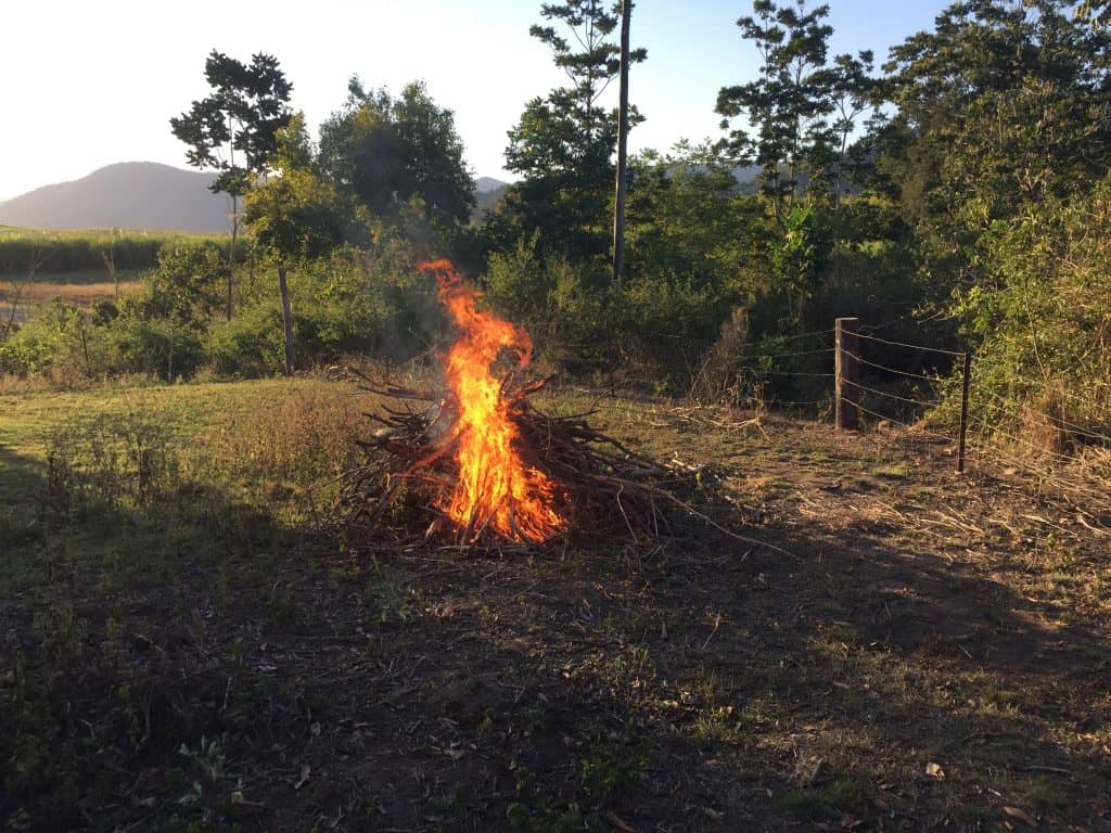 starting-fire-in-fire-pit