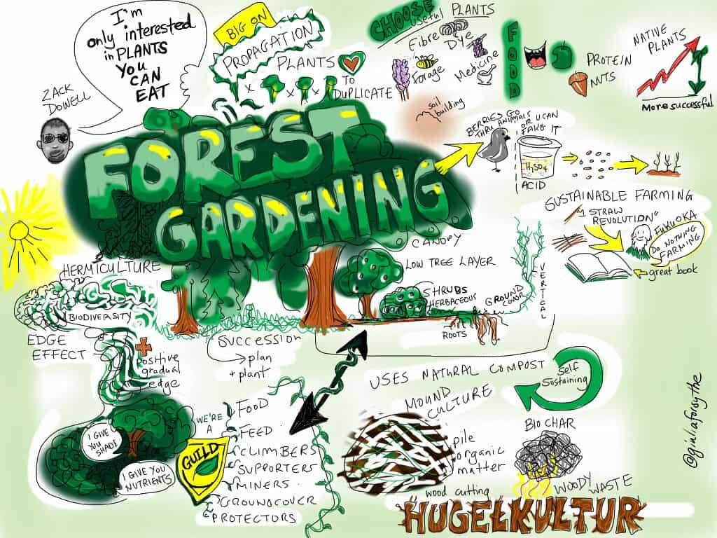 forest-gardening-hugelkultur-food-forest-sustainable-farming