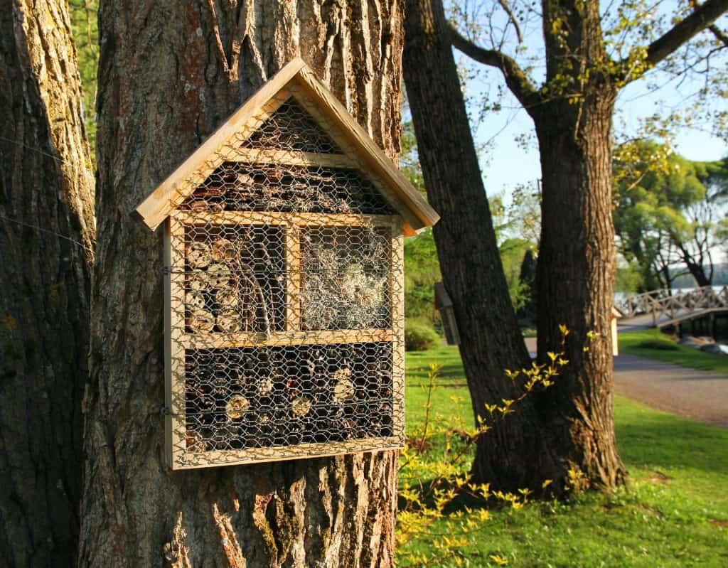 Insect-hotels-on-garden-trees