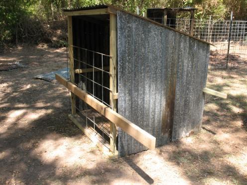 simple-diy-goat-shelter