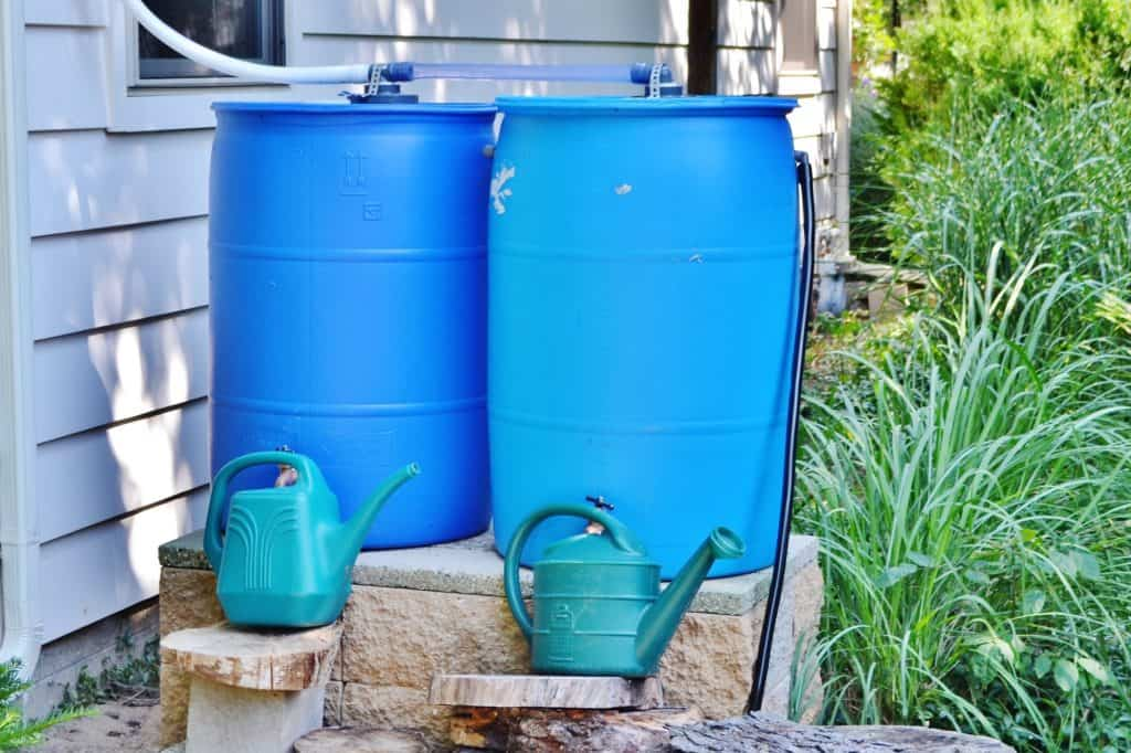 Rain-barrels-save-water-permaculture