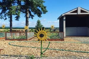 5 Simple Ways to Start Living a Permaculture Lifestyle