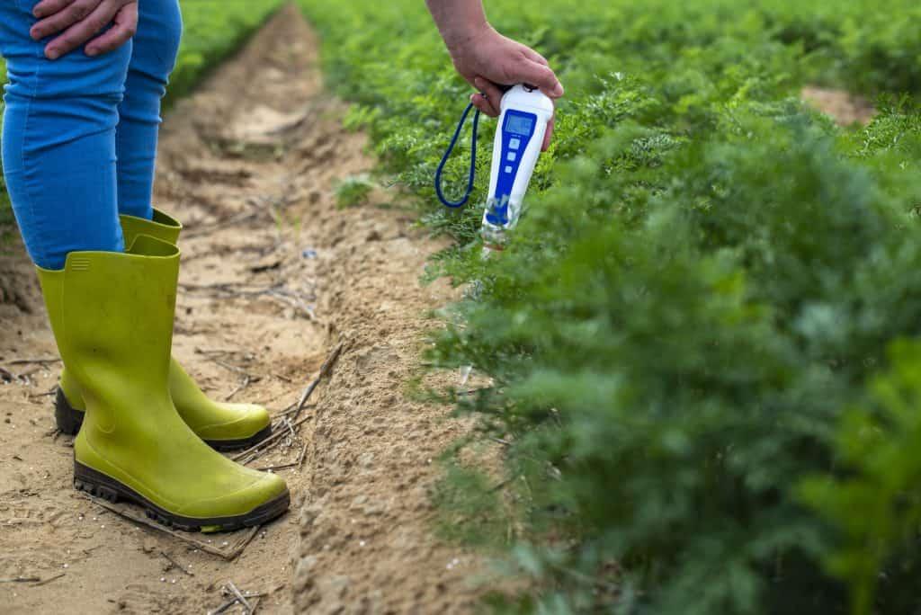 best-soil-thermometer-for-garden