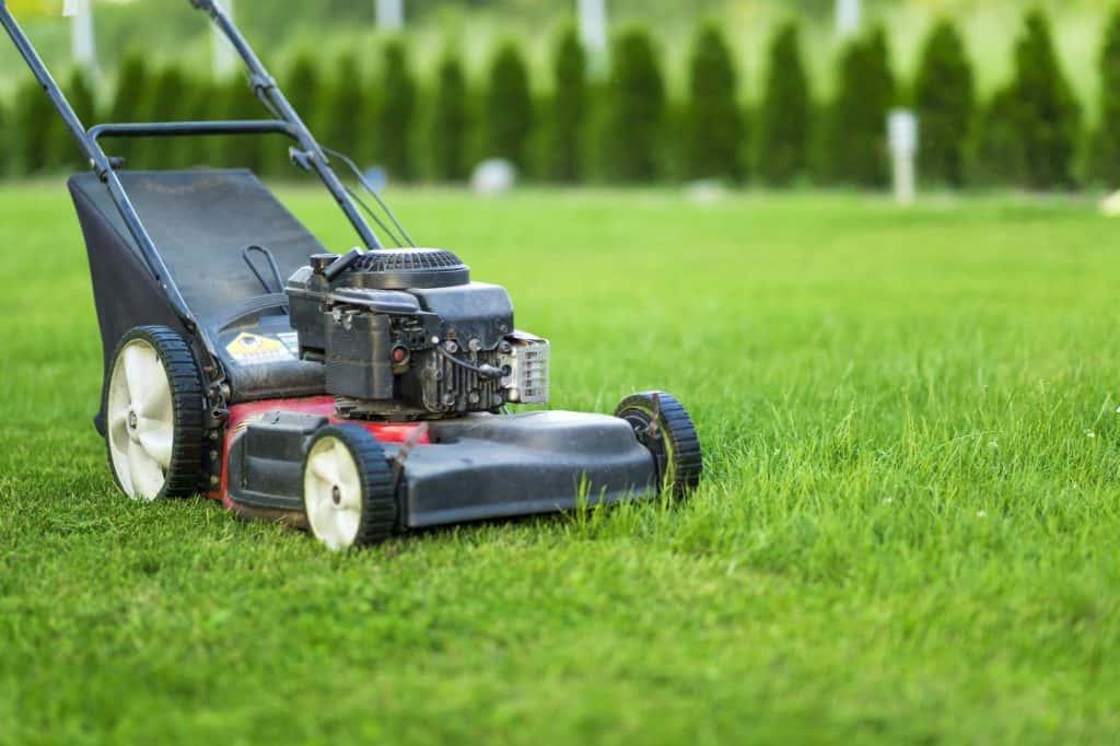 best-lawn-mower-under-300-gas