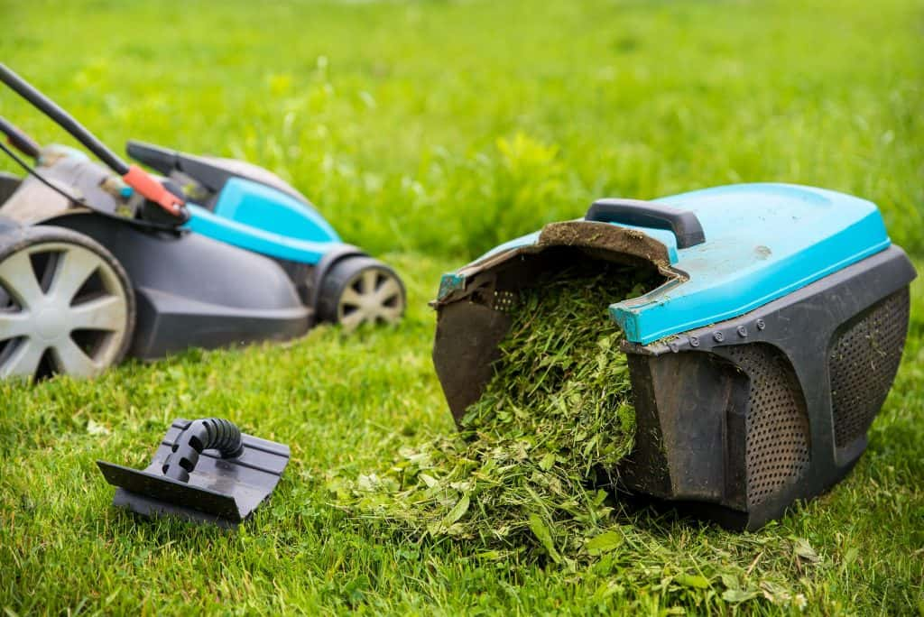 how-to-choose-the-best-lawn-mower