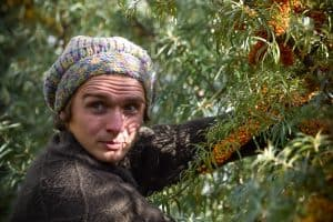 Layers of a Permaculture Food Forest: Shrubs [Part 3]