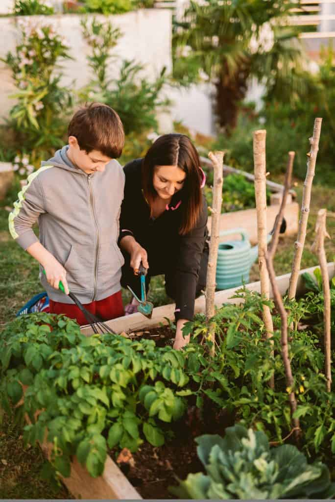the-benefits-of-growing-herbs