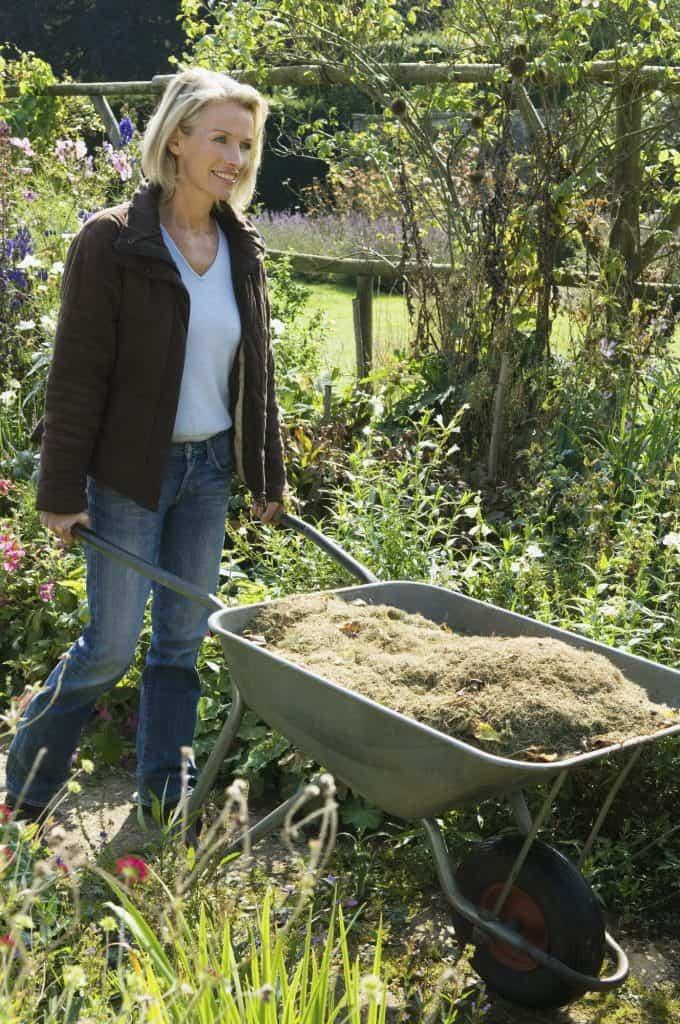 A woman pushing a wheelbarrow of grass clippings.