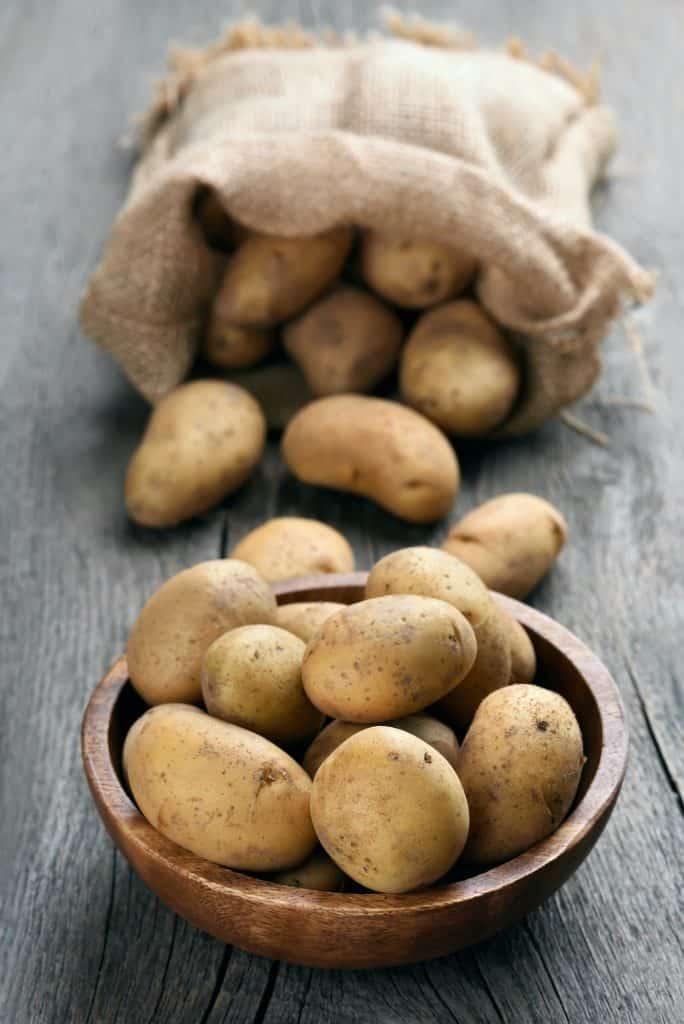 dont-feed-baby-ducks-potatoes