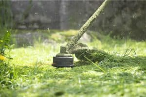 Pros and Cons of An Edger vs Trimmer for Your Lawn