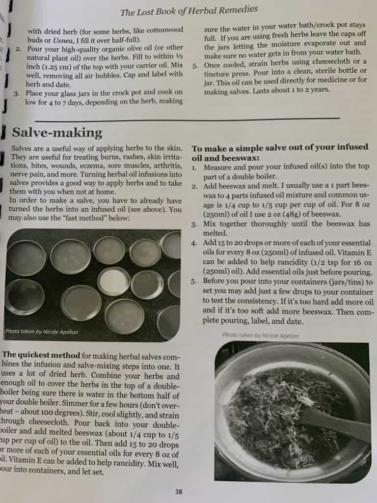 how-to-make-a-salve-lost-book-herbal-remedies