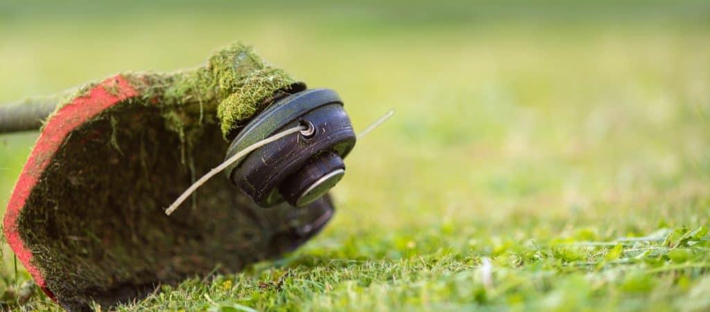 string-trimmer-lawn-care-vs-edger