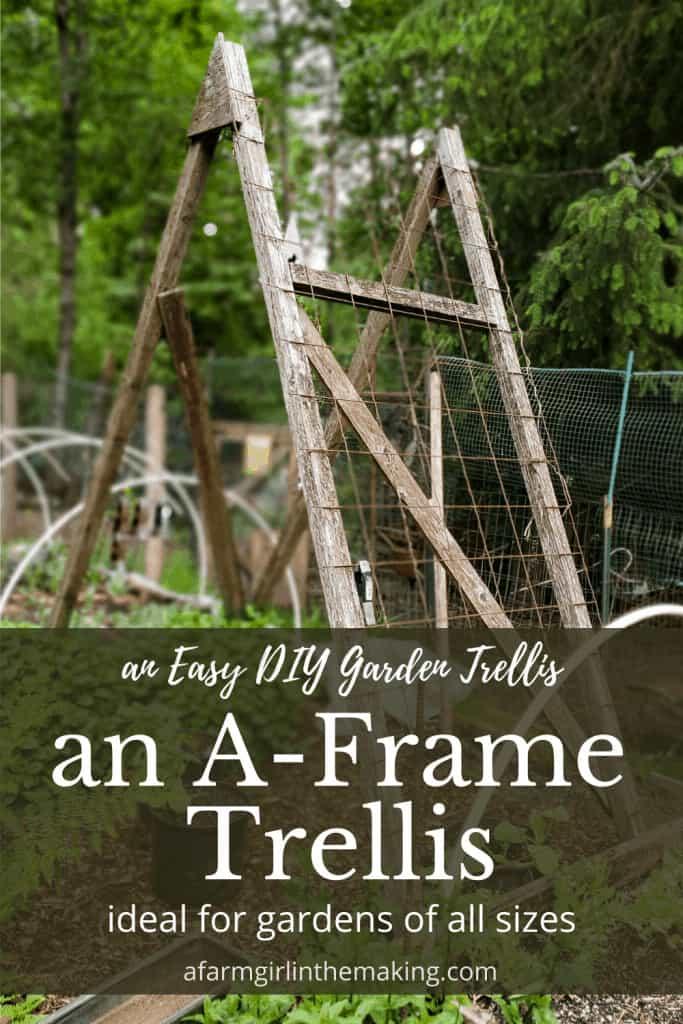 watermelon-trellis-farmgirl-in-the-making
