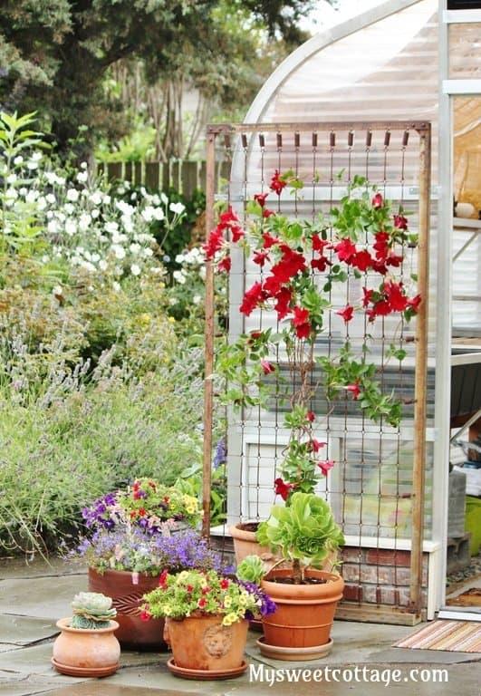 watermon-trellis-bed-spring-DIY-My-Sweet-cottage