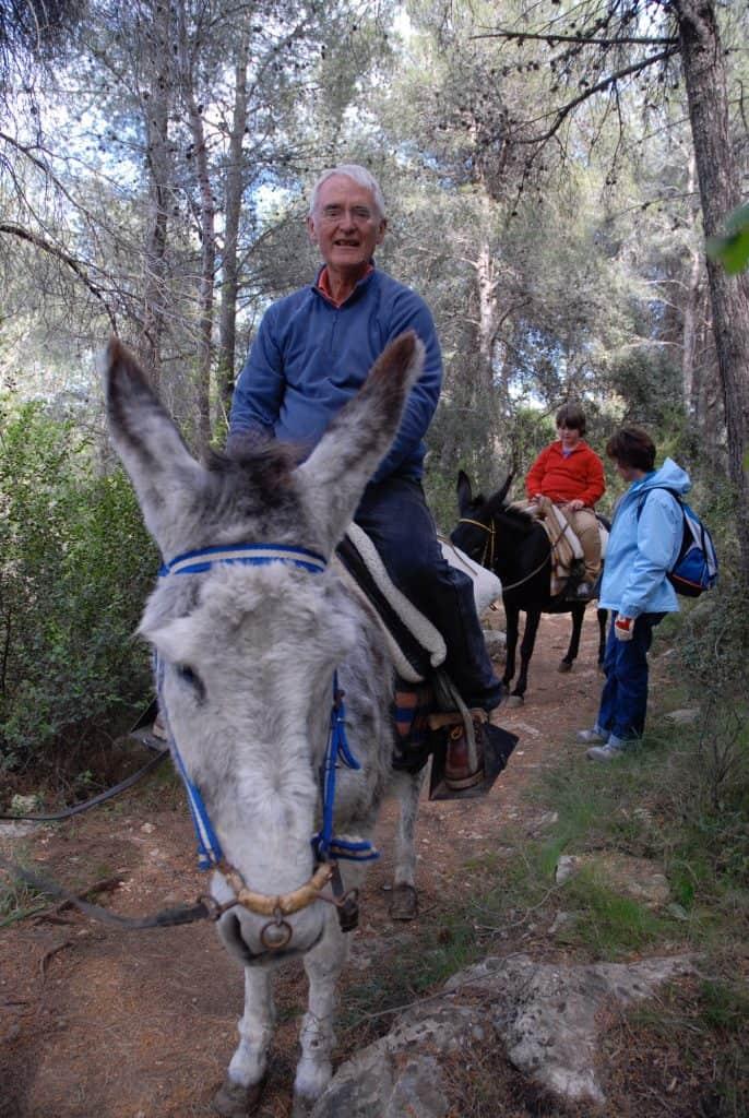training-a-donkey-for-saddle