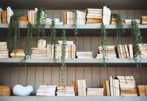 homesteading-books-on-a-shelf
