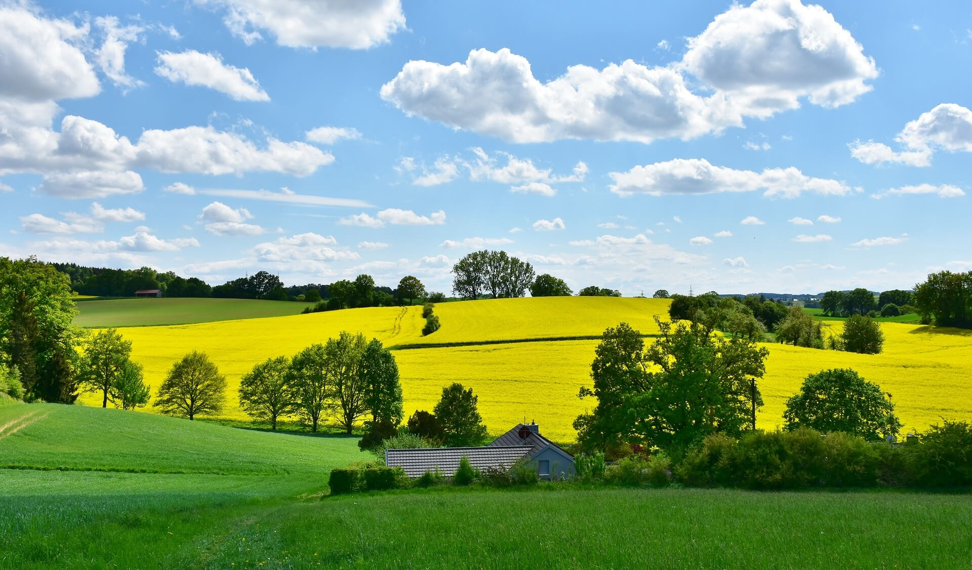 lovely-landscape-of-over-5-acres-for-mowing