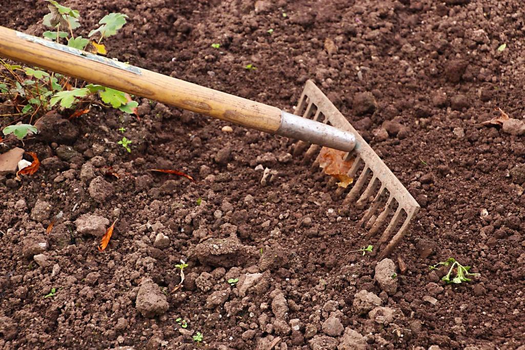 homesteading-garden-rake