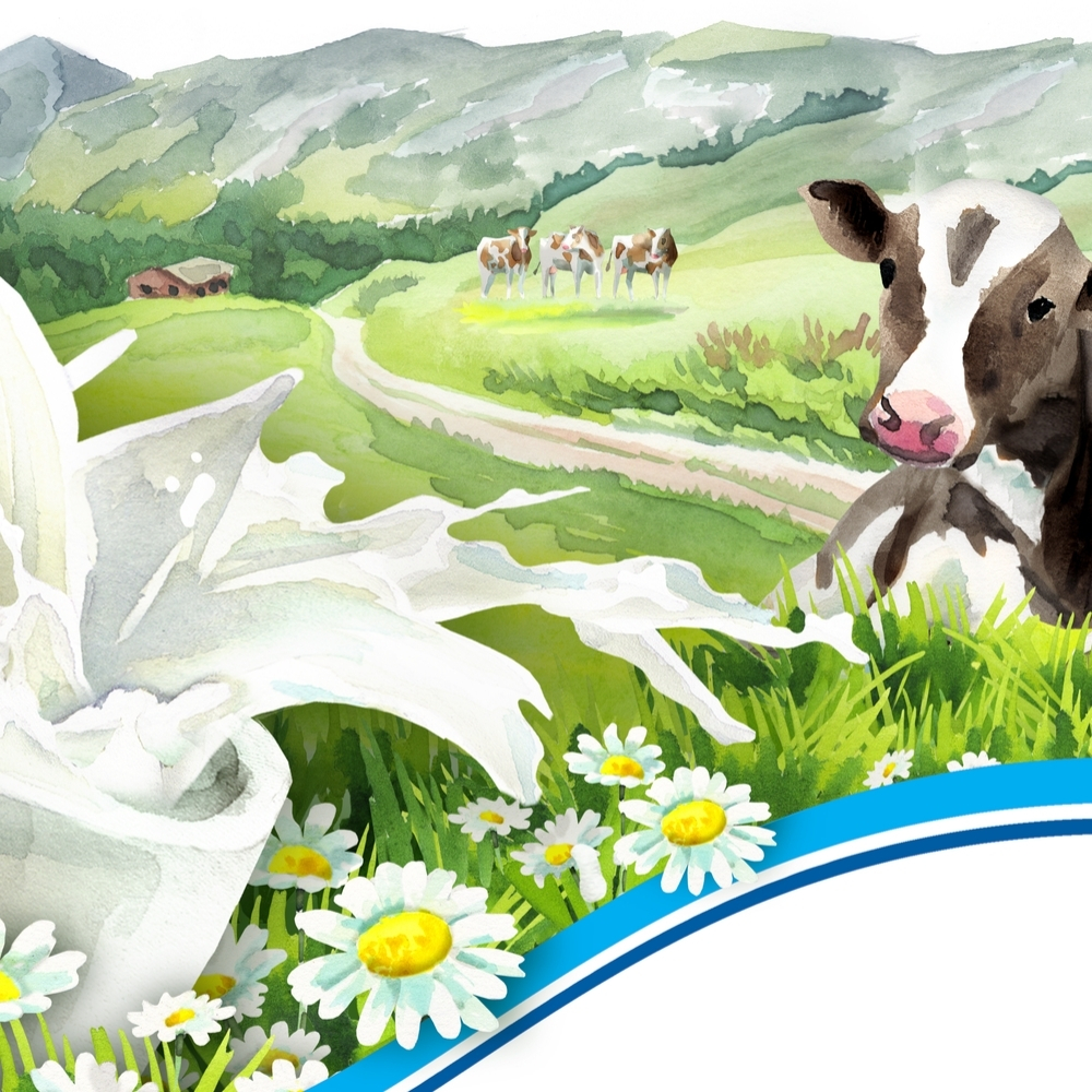 best-cow-for-milk-on-homestead