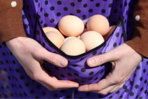 Egg Collecting Aprons - 10 Free and Easy Patterns to DIY