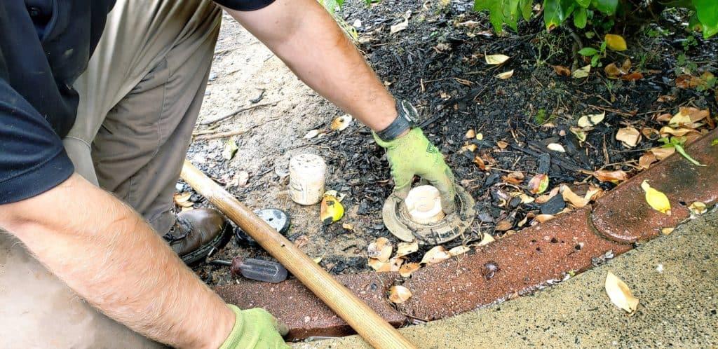 termite-traps-in-soil-around-house