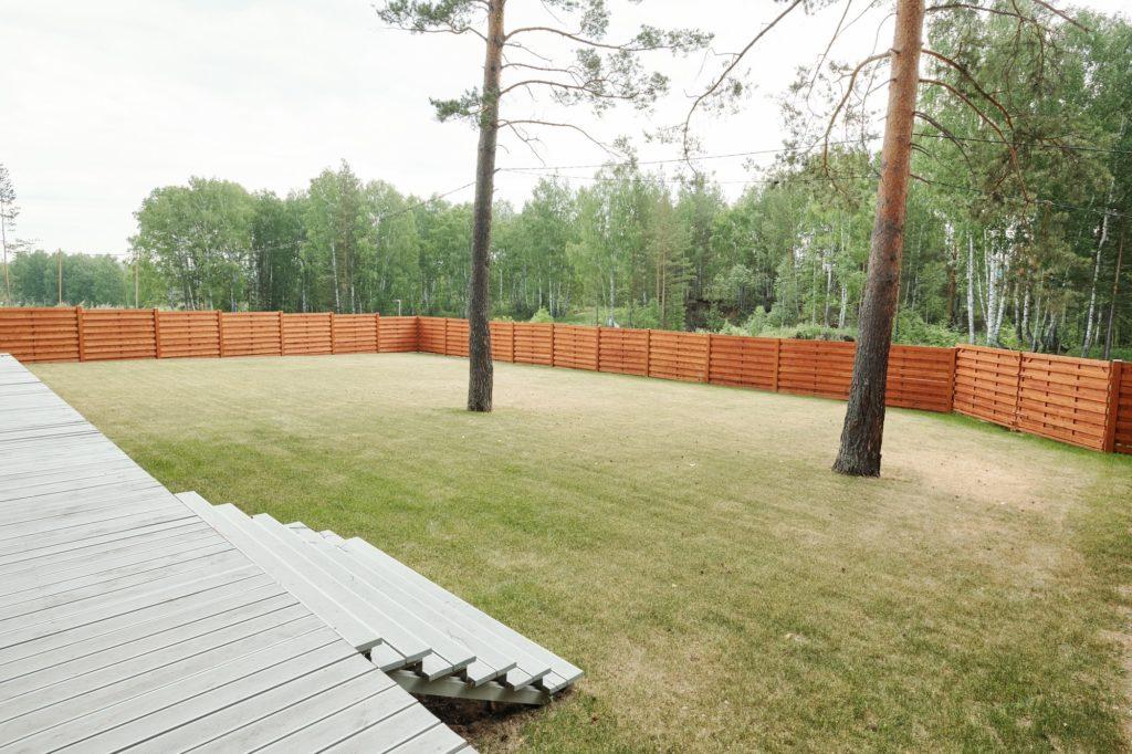 backyard-lawn