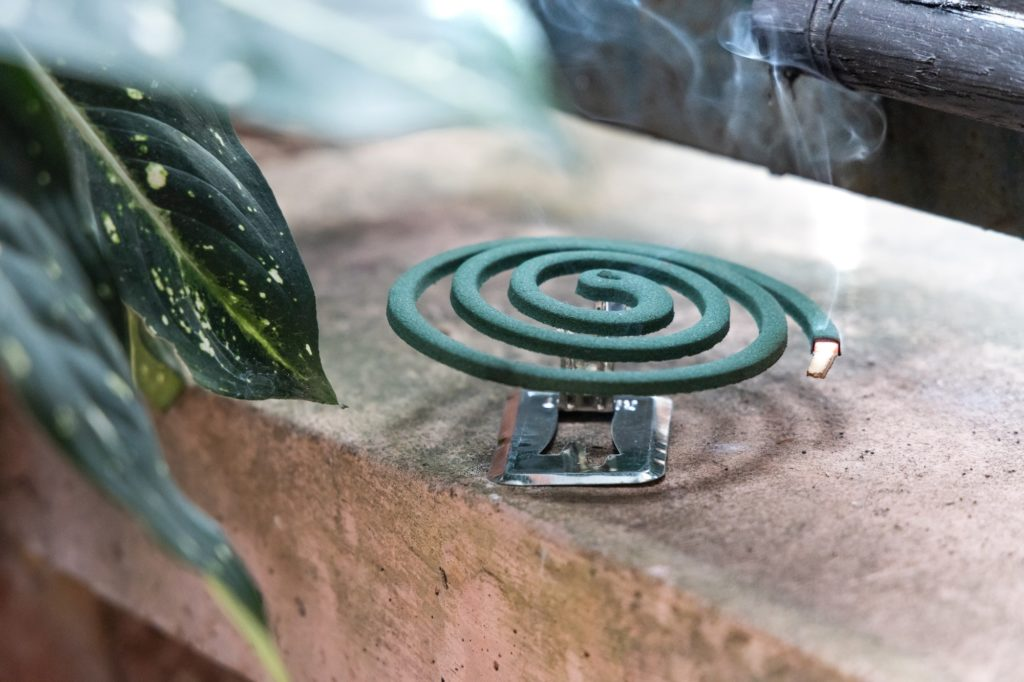 Traditional mosquito repellent coil emit smoke to repel mosquito outdoor
