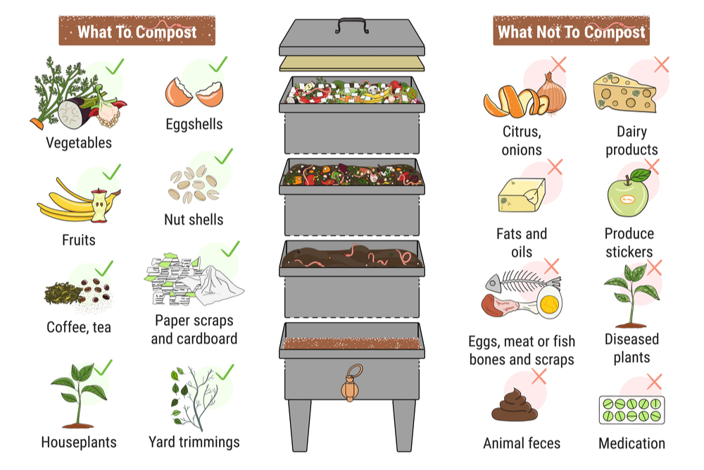 vermicompost-what-to-feed-worms-what-not-to-feed