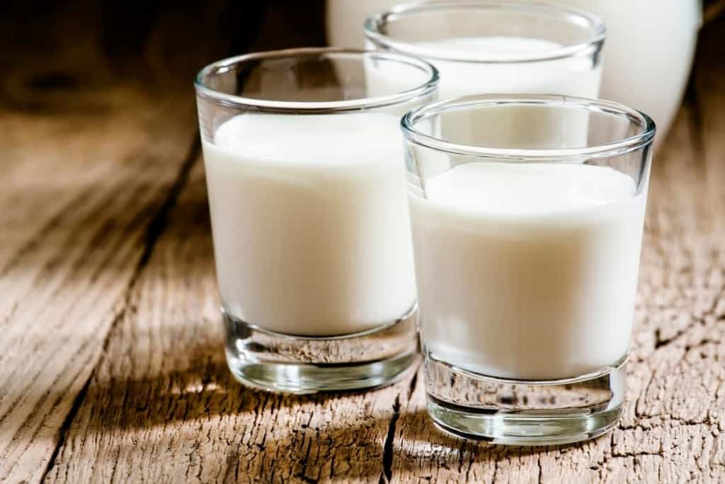fresh goat milk in glasses