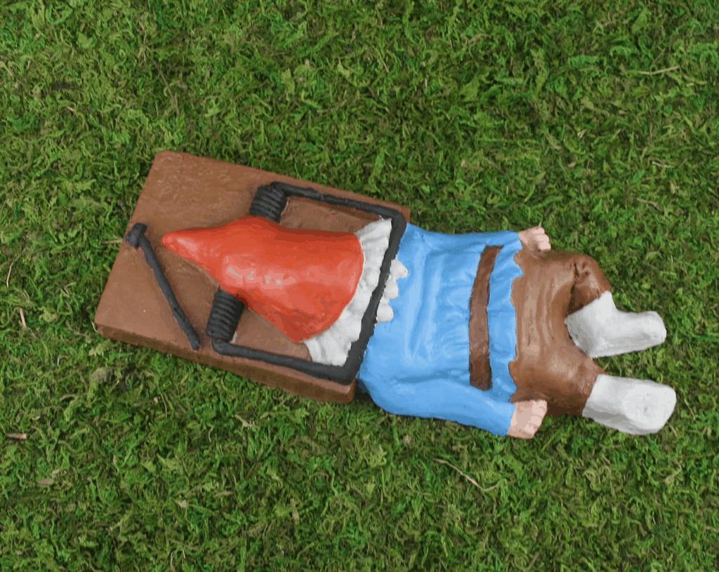 oh snap steve gnome garden